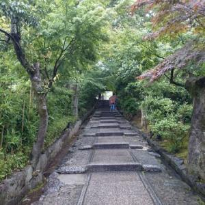 高台寺と坪庭のある喫茶店