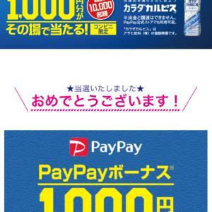 【2020当選】PayPayとか!