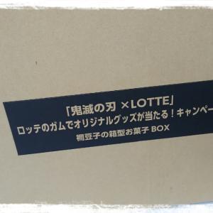 【2020当選】キタ━(゚∀゚)━!