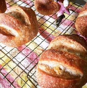 【パン作り】いちご酵母のホワイトチョコパン