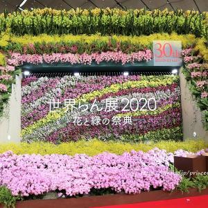 世界らん展2020 花と緑の祭典