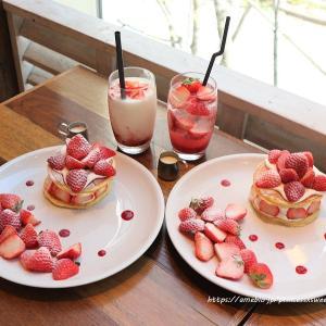 モア ストロベリーガーデンパンケーキ♡J.S. PANCAKE CAFE