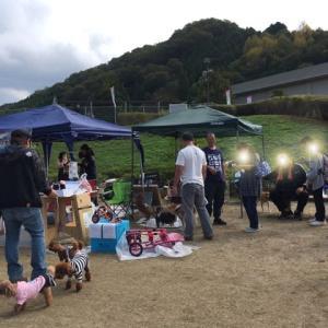 動物愛護フェスティバルでした!