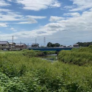 20200913 埼玉河川パトロール