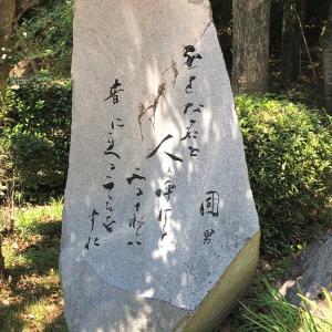 華やぎの旅しおり NO881~冬春夏秋~NO 5