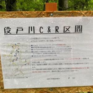 段戸川C&R区間