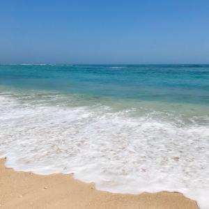 お気に入りのビーチ