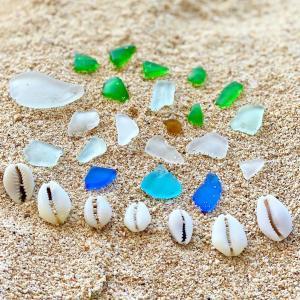 バリ島の海で集めたタカラガイでアクセサリーを作ります!