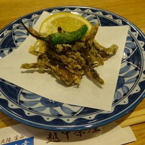 越中茶屋で食べたどじょうの唐揚げは夏の風物