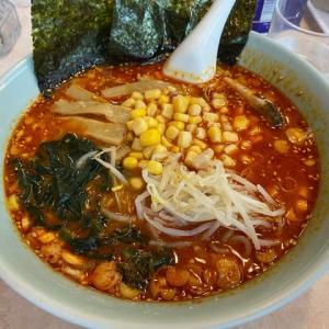 港南区 ラーメン菱和 からし麺
