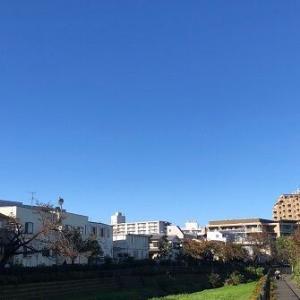 休日♪2週続きのロングランは小金井公園まで。