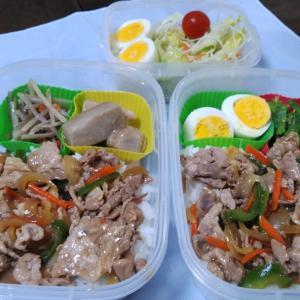 豚肉と野菜の生姜焼き丼風