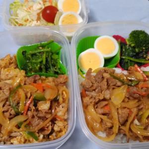 豚肉と野菜炒め丼 韓国風