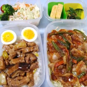 焼肉のっけ弁当と魯肉飯弁当