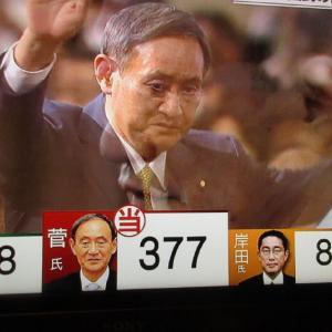 自民党の総裁に菅義偉(すが よしひで)氏が就任。
