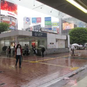 雨の日の電車通勤も良いものです。