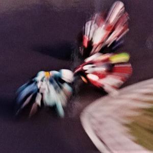 1990年 チームシンスケと鈴鹿6耐/鈴鹿4耐スタート