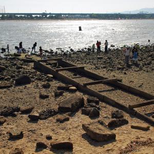 甲子園浜に広がる遺構を探索