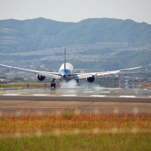 大阪伊丹空港 千里川土手で迫力の飛行機離発着を撮影