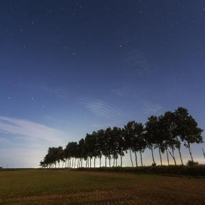 北海道美瑛町の星空:マイルドセブンの丘・ケンとメリーの木・セブンスターの木