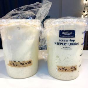 酵母管理の実験(実験酵母でパンを焼く)