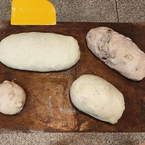 一回の焼成でどれだけのパンが正しく焼けるか、テスト
