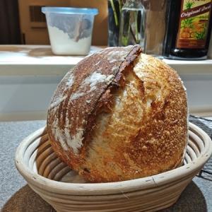 久しぶりの本格ハードパン、自家製酵母のカンパーニュ