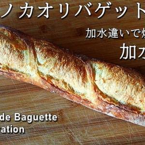 国産小麦「キタノカオリで作るバゲット企画!加水比べ焼き比べ」第一弾、加水70%バゲット動画をYou Tubeに公開しました。