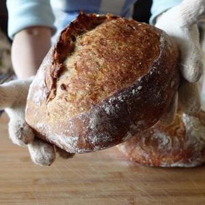 自家製ルヴァン酵母で仕込む、ライ麦のカンパーニュ