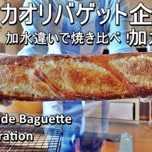 国産小麦「キタノカオリで作るバゲット企画!加水比べ焼き比べ」第二弾、加水75%バゲット動画をYou Tubeに公開しました。