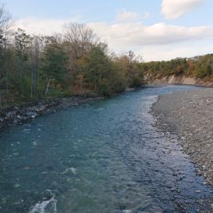 ホントこの川は採れないな