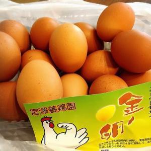 宮澤養鶏園さんの金の卵やっとゲットできた~!!(豊田市)