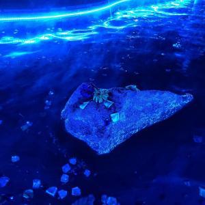 お台場の大江戸温泉