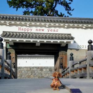 新年 明けましておめでとうございます!!
