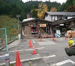 山にワンコと一緒に行くなら、やっぱりここねだゾ!御岳山!!