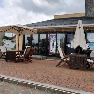 山中湖でワンコと一緒にイタリアン!!レストラン&ギャラリー SOLA