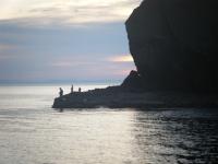日本海のマガレイ終漁?