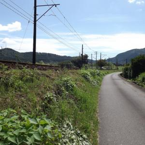 ★静岡県・大井川鐡道きかんしゃトーマス号