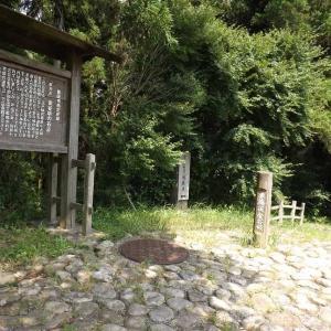 ★茶畑ン中聖火リレー  牧之原ハイキングコース東海道石畳