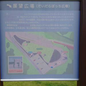 静岡空港展望広場 真上を飛んでる飛行機