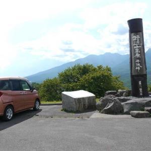 ★長野県・飯盛山は山野草がいっぱい 蝶と遊ぶ