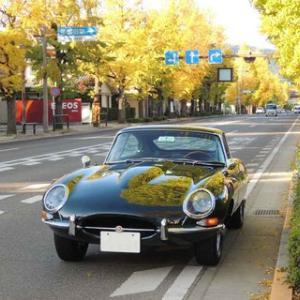 ジャガーEタイプで、八王子のクラシックカー パレードに参加して来ました。