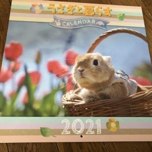 うさぎと暮らすカレンダー2021☆
