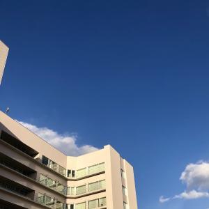 血液内科・呼吸器内科診察 : 今年通院も今回が最終。