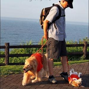 海を見に飯岡灯台へ
