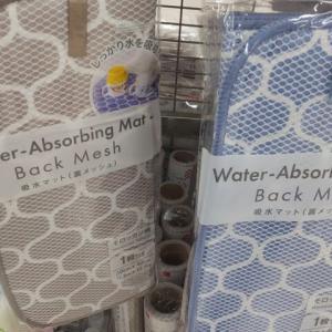 DAISOの給水マットが便利。