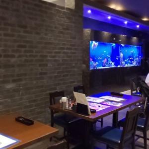 メヒコ デックス東京ビーチ店