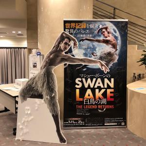 SWAN LAKE 2019〈3〉マックス&ドミニク再び