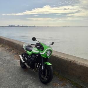 三番瀬で。東京湾の背景でなんとか撮ってみた。