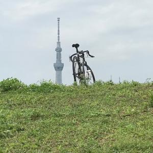 なまった体に自転車で運動。バイクもいいけど人間2気筒